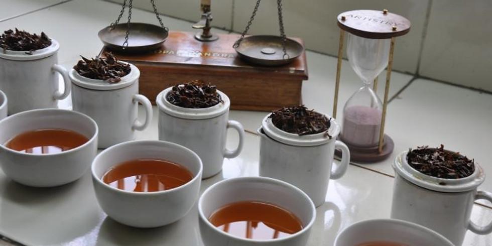 Best Sellers...A Virtual Tea Tasting...11/21/20 @ 4:00 PM EST