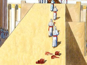 העלאת איברים מהכבש למזבח