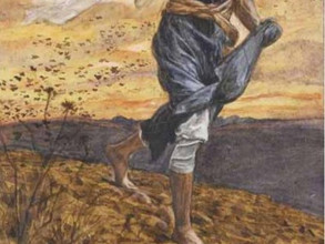 06.13. 2021 Eleventh Sunday in Ordinary Time