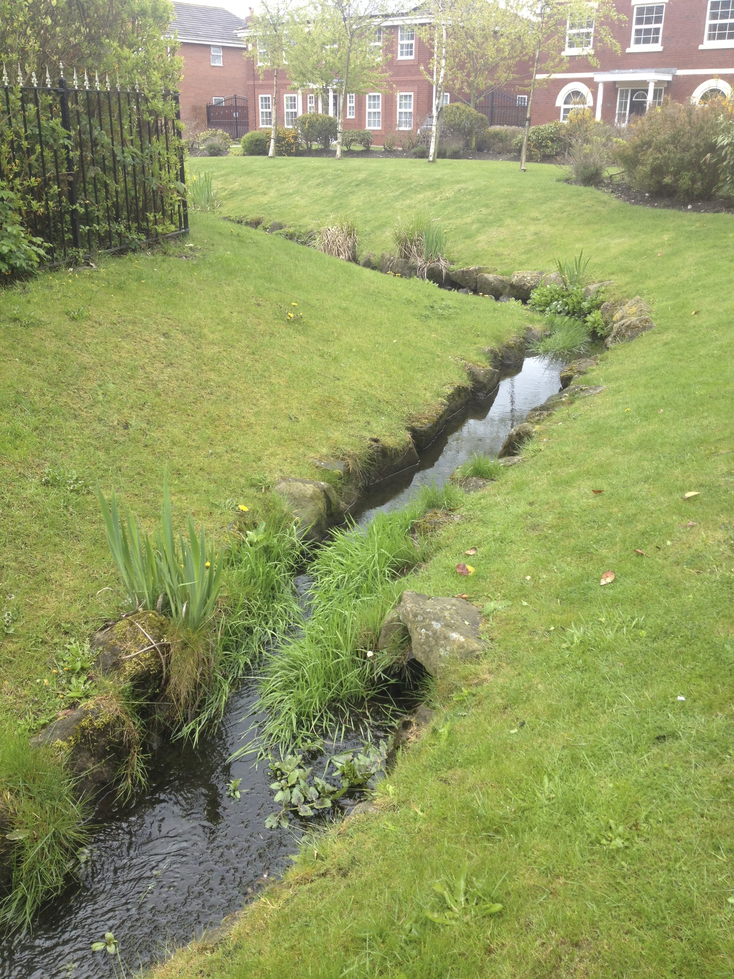 Watercourse Cleaning & Maintenance