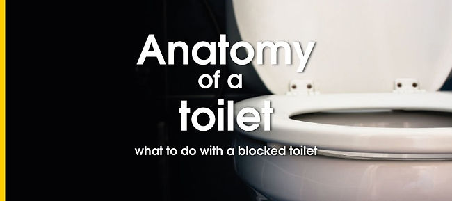 Toilet unblocker Blackpool