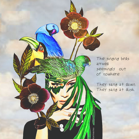 Day 227 - The Singing Birds