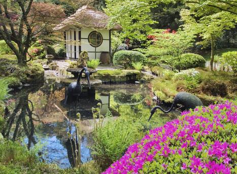 Get Set For Gardens…