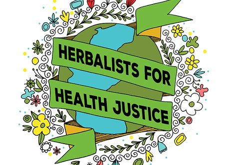 My View from the Weeds: Herbalists Without Borders