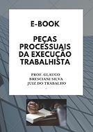 Cópia_de_Direito_TP_(11).png