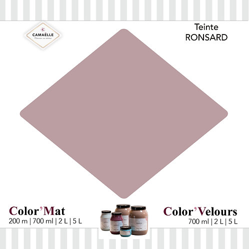 COLOR'VELOURS RONSARD