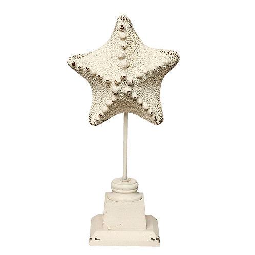 Étoile de mer sur piédestal