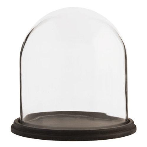 Cloche en verre sur soclebois noir