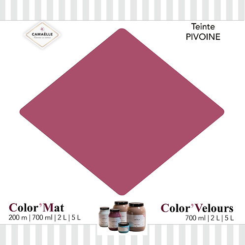 COLOR'MAT PIVOINE