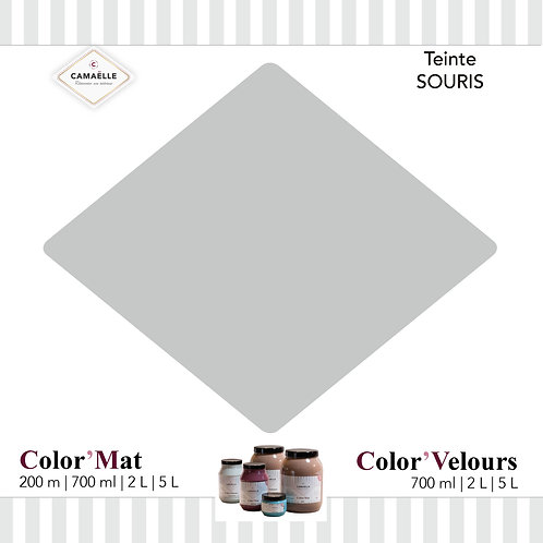 COLOR'MAT SOURIS