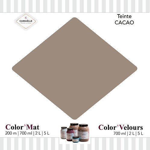 COLOR'VELOURS CACAO