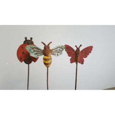 Trio d'insectes à planter