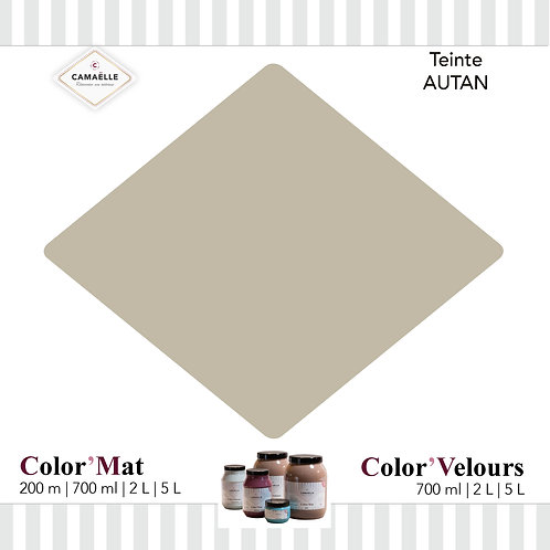 COLOR'VELOURS AUTAN