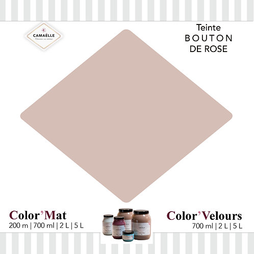 COLOR'MAT BOUTON DE ROSE