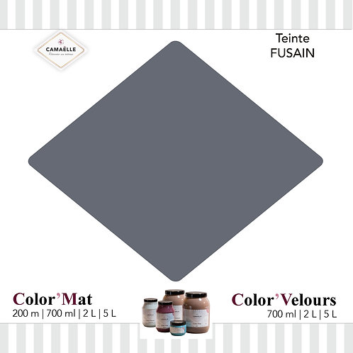 COLOR'VELOURS FUSAIN