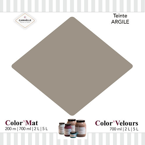 COLOR'VELOURS ARGILE