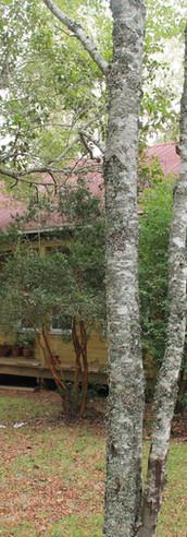 Casa Bertrand