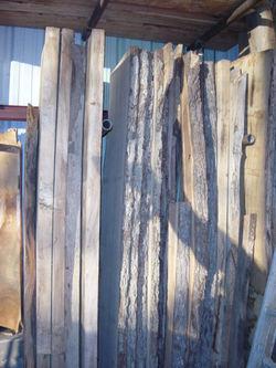 woodshed slabs9861.JPG