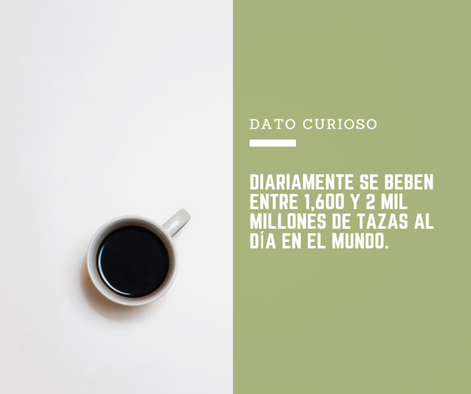 DATO CURIOSO