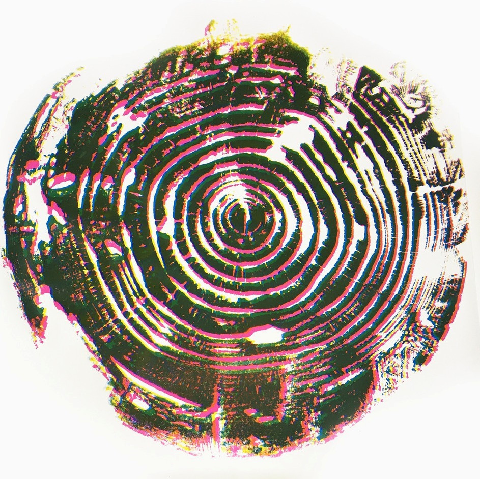 woodprint2 copie_edited_edited.jpg