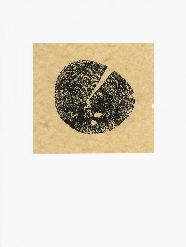 woodserie2 copy.jpg