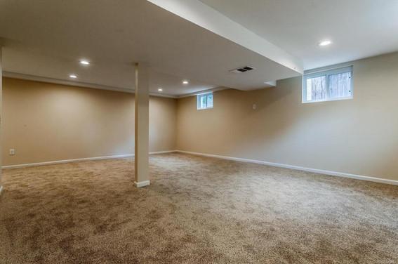 carpet .jpg