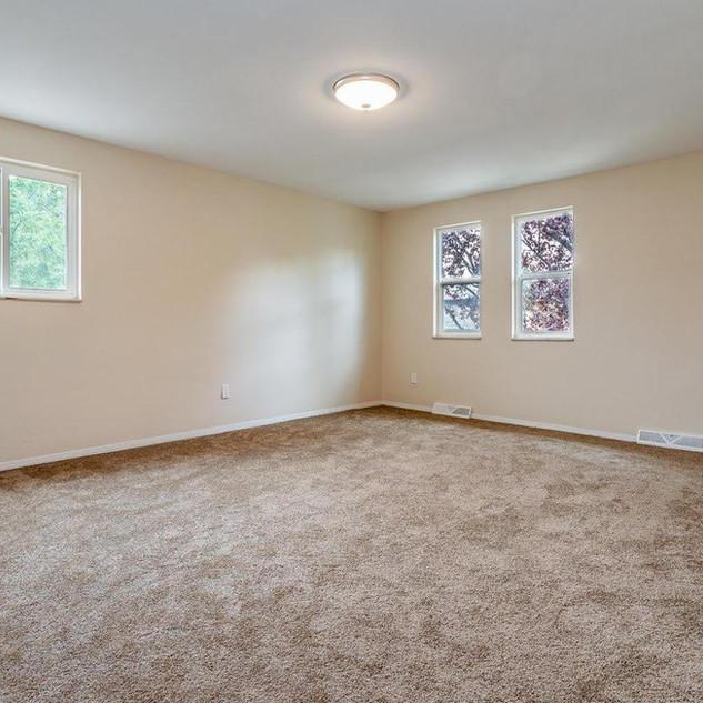 carpet 3 .jpg