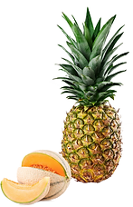 melone e ananas.png