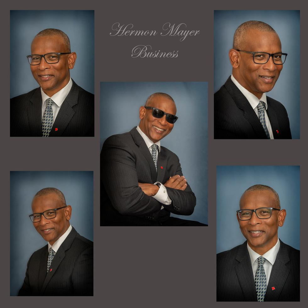 Hermon Mayer Business
