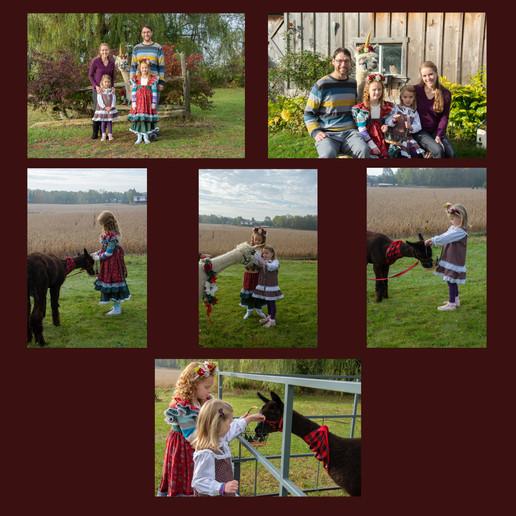 Family with Alpacas