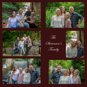 The Stevenson family