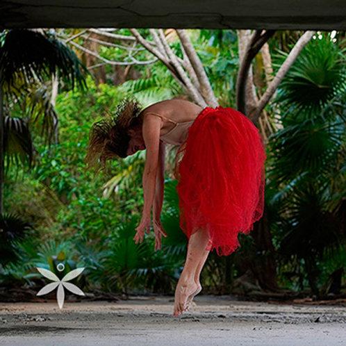 Curso ROS - Descubriendo la Fotografía Autoral