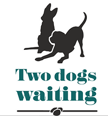 2 dogs waiting.PNG