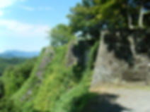 岡城跡  .jpg