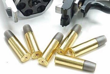 WG Webley Revolver 6 Shells