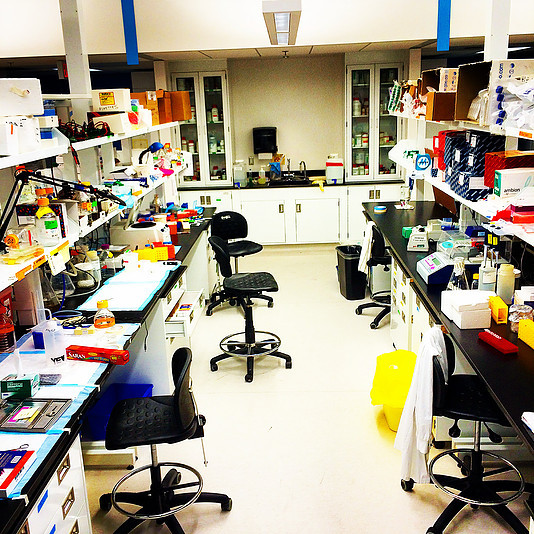 Lab benches at the PGCRL