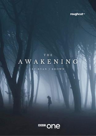 The Awakening - Ryan J Brown