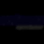 bioracer-speedwear-proownedcycling_1200x