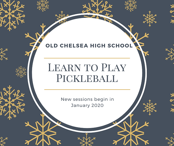 Learn to Play Pickleball