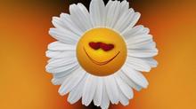Les émotions et leur impact sur notre santé, mardi 2 avril, 17h30