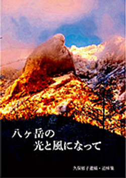 book_info_11