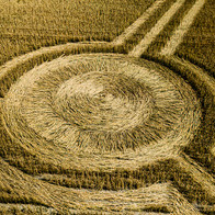 Crop Circle, Heytsbury, Warminster, Wiltshire - Catherine Fallon Operations