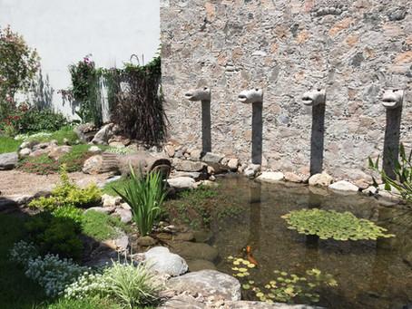 Estanques pequeños puede hacer la diferencia en su jardín