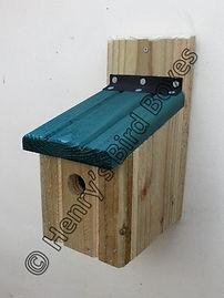 BYO Basic Bird Box Pine Green.jpg