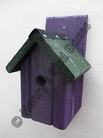 Classic Bird Box Purple & Green.jpg