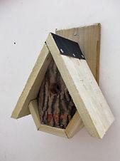 Woodland Alpine Bird Box