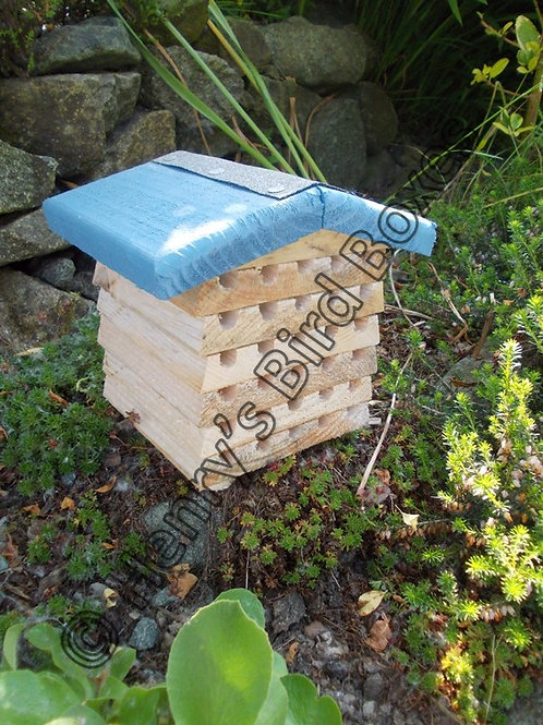 'Beehive' Insect House