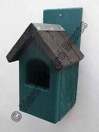 Classic Robin Bird Box Pine Green & Brow