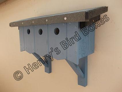 Sparrow Terrace Sky Blue.jpg