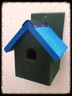 Starling Bird Box - Henry's Bird Boxes